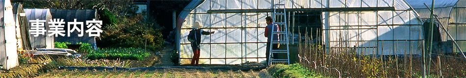 園芸施設共済
