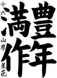 山原星花_豊年満作